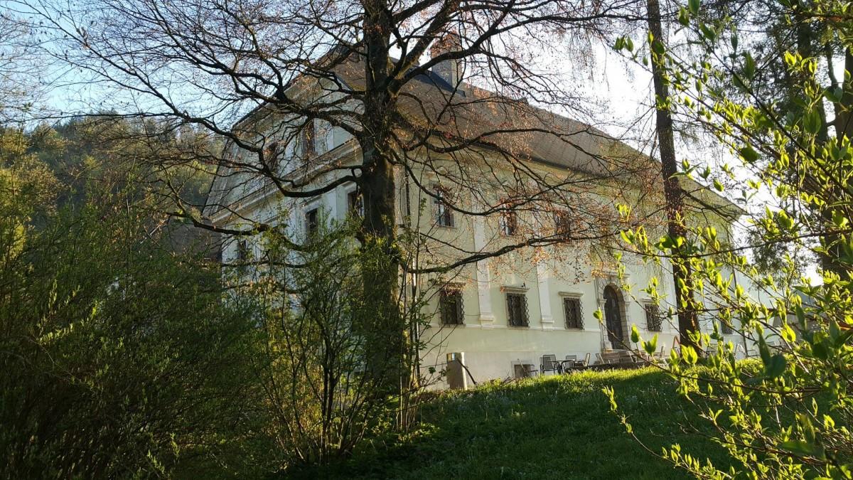 Dvorec Visoko - zaprtje