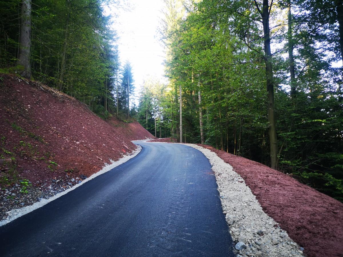 Asfaltiran odsek ceste Lovran - Vic v skupni dolžini 400 m. (Foto Jure Burnik)